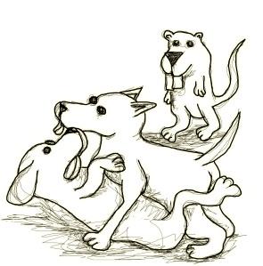 dog fuk dog